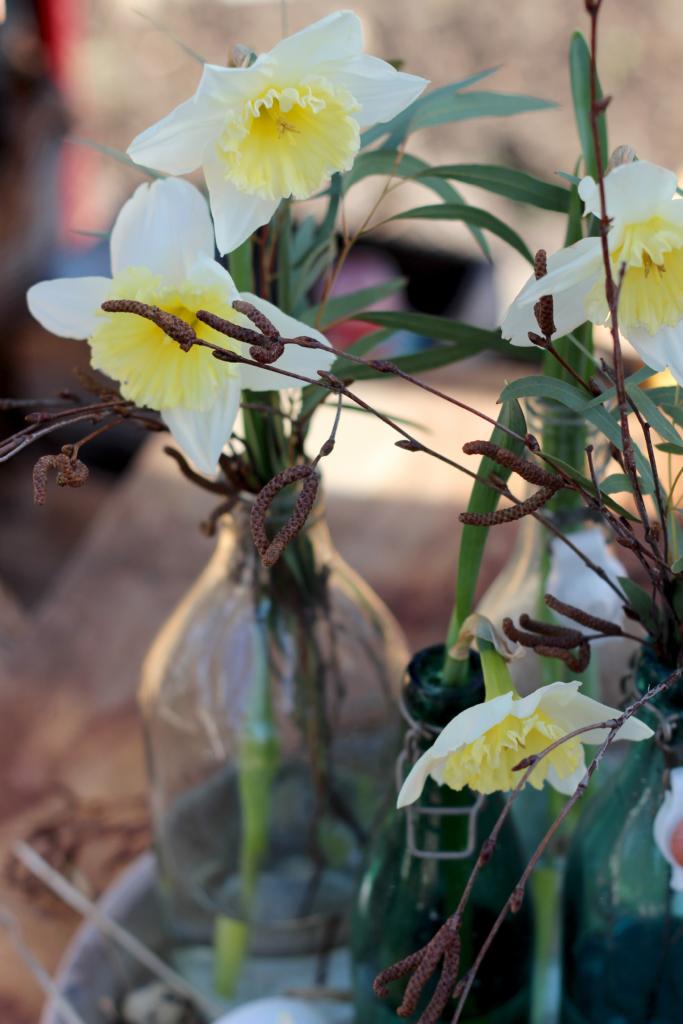 vårlilja
