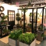 Från balkong till idéträdgård – hur ska detta gå?