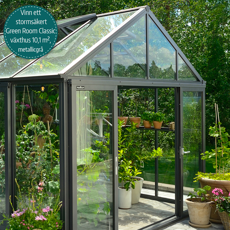Green Room Classic växthus stormsäkert