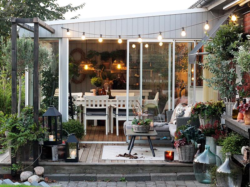 Växthus, sticklingar och vårlökar!
